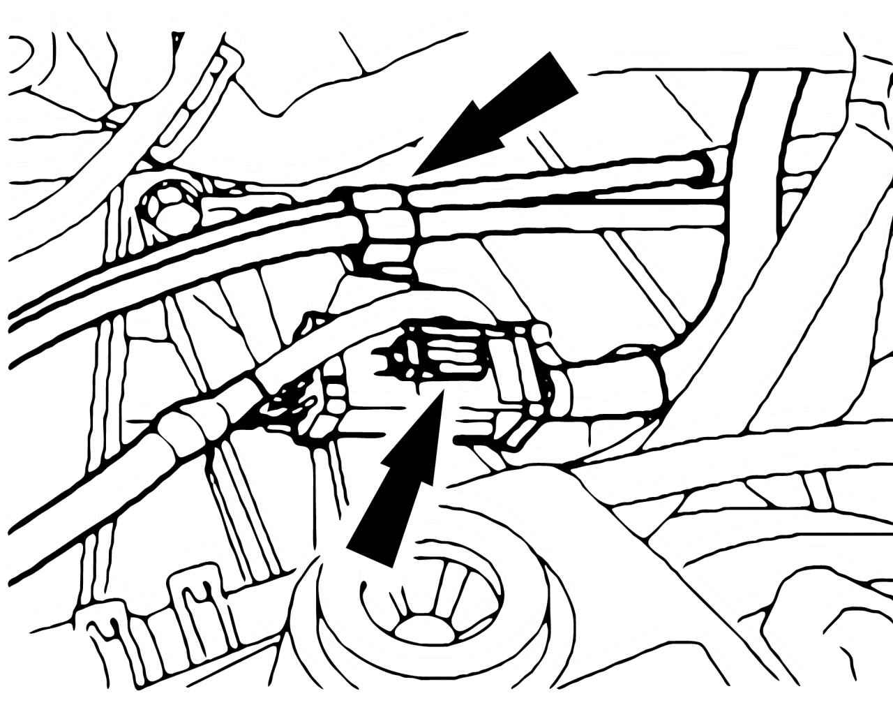 Форд фокус 1 в/в провода zetec 1 8 5 фотография