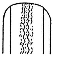 14.6 Виды и причины износа протектора шины
