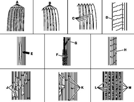 2.17 Проверка состояния и усилия натяжения ремней привода вспомогательных агрегатов
