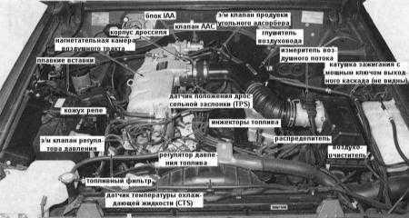 6.2.1 впрыска топлива (EFI) и управления двигателем - модели 4.2 л выпуска после 1992 г.