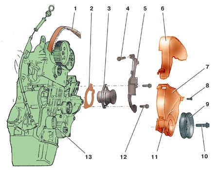 5.5 Снятие и установка водяного насоса на моделях с бензиновыми двигателями