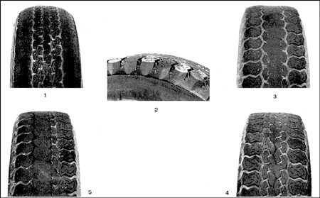 2.6 Проверка состояния шин и давления в шинах